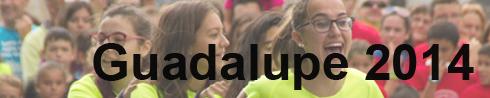 Festa da Guadalupe (1/6)