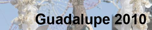 Festa da Guadalupe (4/5)