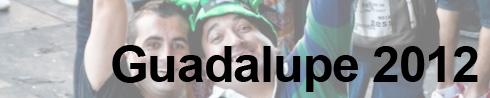 Festa da Guadalupe (2/5)