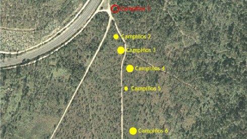 campinhos1