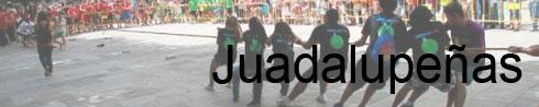 Fotos das festas da Guadalupe de Rianxo 2013 (2/6)