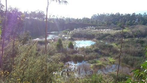 lagoa2