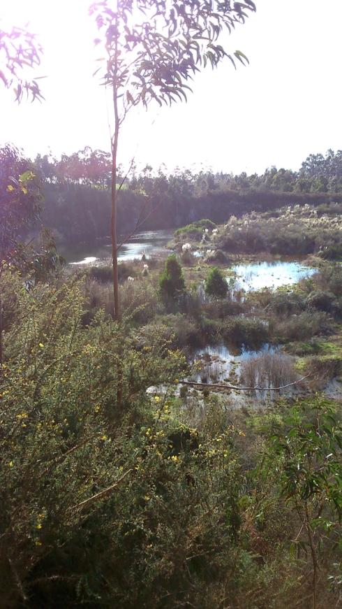 lagoa3