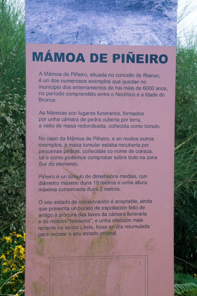O patrimonio escondido e esquecido de Rianxo: a mámoa de Piñeiro (3/4)
