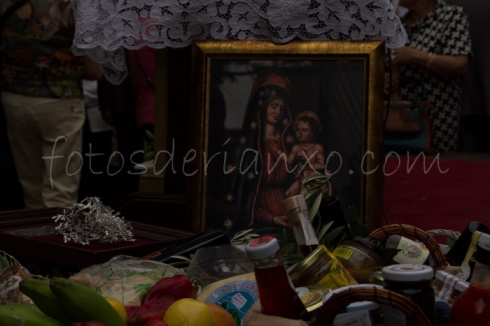procesion oscar 221