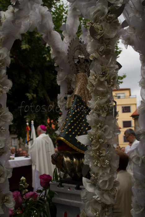 procesion oscar 228