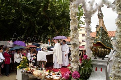 procesion oscar 295