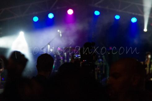 rockinrian2014 (15)