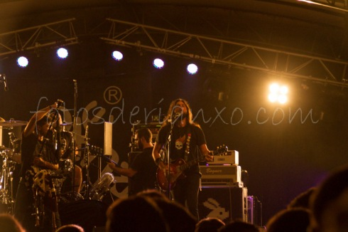 rockinrian2014 (23)