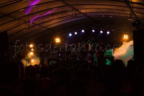 rockinrian2014 (24)