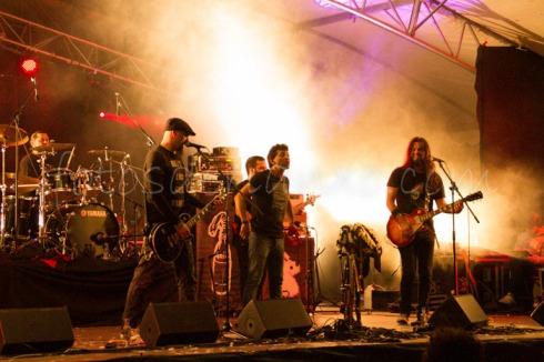 rockinrian2014 (27)