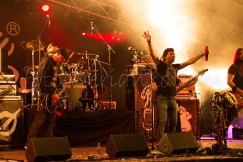rockinrian2014 (30)