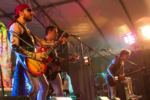 rockinrian2014 (8)