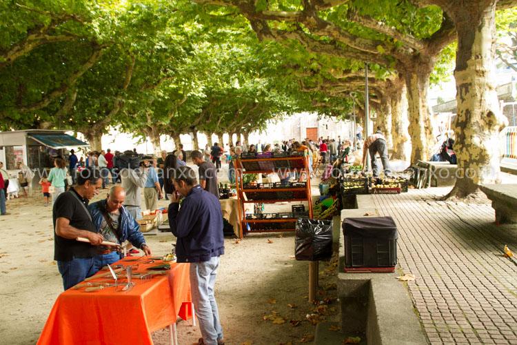 Fotos da feira labrega